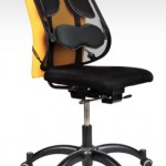 Support ergonomique dorsal Fellowes